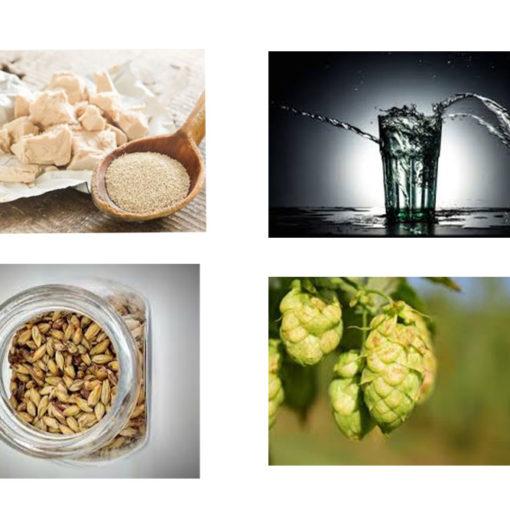 ingredienti birra